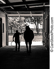 Leading a Horse from the Barn