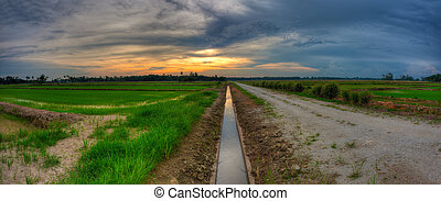 Leading Line Sunset at a Paddy Field in landscape format.
