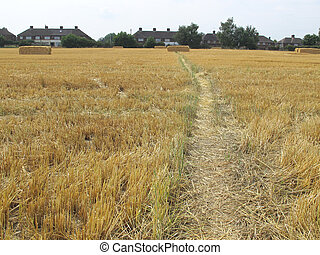 leading to the bale