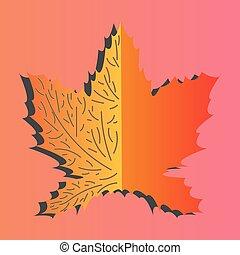 leaf., acero