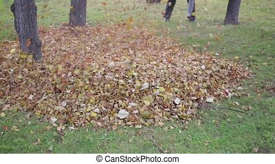 Leaf Blower in Park