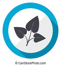 Leaf blue flat design web icon