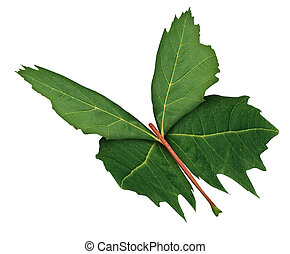 Leaf Butterfly as a symbol of nature hope and growth or ...