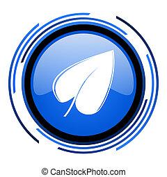 leaf circle blue glossy icon