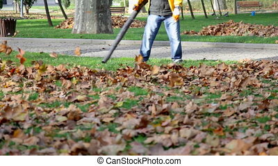 leaf cleaner in the park, shooting Canon 5D Mark II