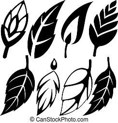 leaf design set vector illustration