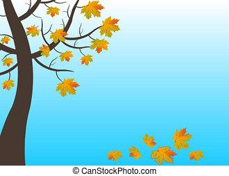 Leaf Fall Animation