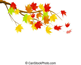 Leaf fall - Illustration of tree branch with falling leaves