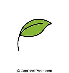 Leaf. Filled color icon. Nature vector illustration - Leaf. ...