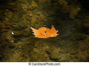 Leaf floating