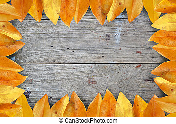 leaf frame on wood background.