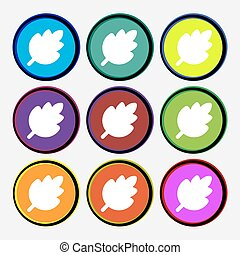 Leaf, Fresh natural product icon sign. Nine multi-colored round buttons. Vector