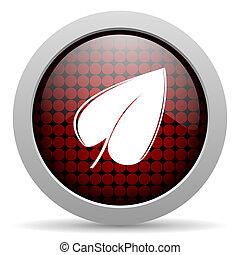 leaf glossy icon