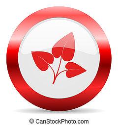 leaf glossy web icon
