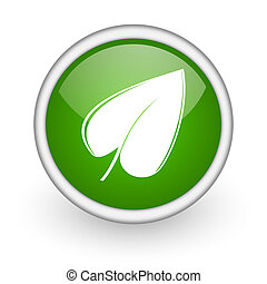 leaf green circle glossy web icon on white background