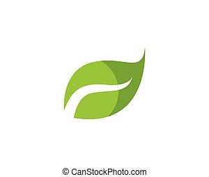 Leaf green leaves logo vector
