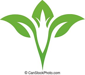 Leaf green natural logo vector