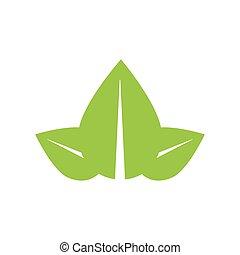 Leaf green plant nature season icon. Vector graphic