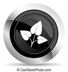 leaf icon, black chrome button, nature sign