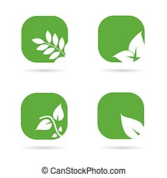 leaf icon in green color vector