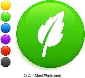 leaf icon on round internet button
