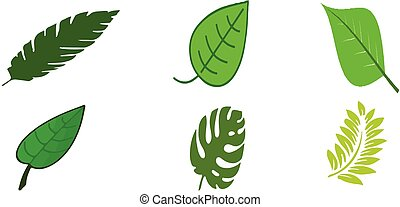 leaf icon on white background
