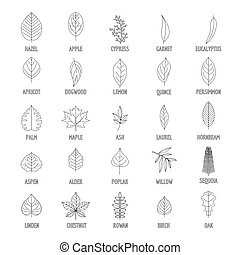 Leaf icons set, outline style