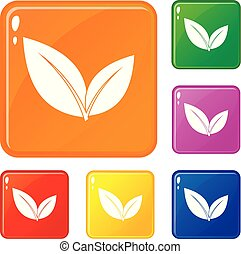 Leaf icons set vector color