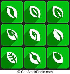 Leaf icons set