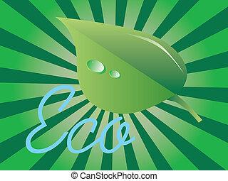 Leaf - illustration of green leaf with dew on sunburst...