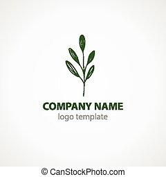 leaf., illustrazione, vettore, verde, sagoma, logotipo