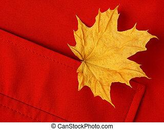 leaf in pocket