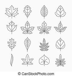 Leaf line icons vector set