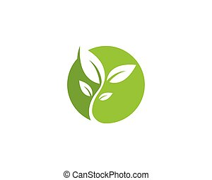 Leaf Logo vector