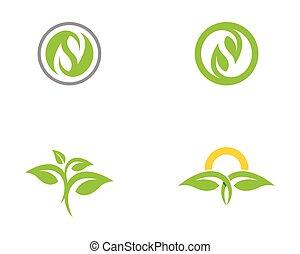 Leaf nature Logo Template
