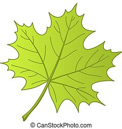 Leaf of a maple, vector - Leaf of a maple, nature symbol, ...