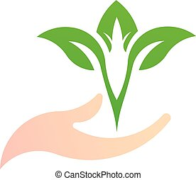 Leaf on the hand, green natural logo vector