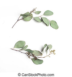 Leaf pattern. Frame made of green leaves on white background. Flat lay, top view, copy space