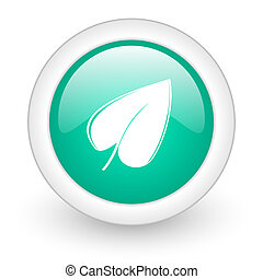 leaf round glossy web icon on white background