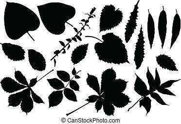 Leaf set