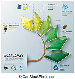 Leaf Shape Three Dimension Polygon Ecology And Environment...