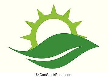 leaf sun logo dsign