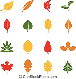 Leaf vector color icons