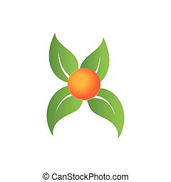 Leaf vector logo, Elements for eco and bio logos