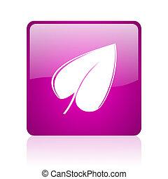 leaf violet square web glossy icon