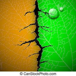 Leaf with crack