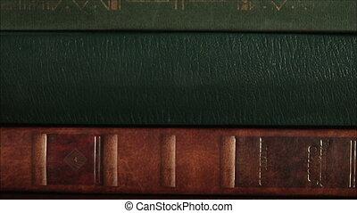 leafing through a book, pan