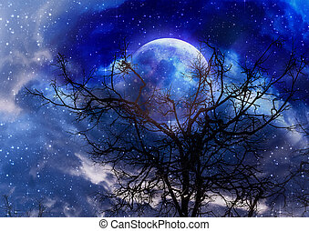Leafless branches and full moon - Black leafless tree...
