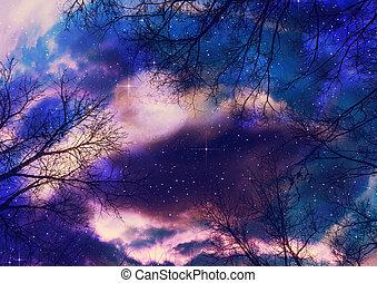 leafless, filiais árvore, sobre, céu estrelado