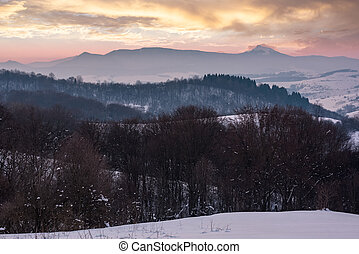 leafless forested hills at winter dawn. beautiful mountain...